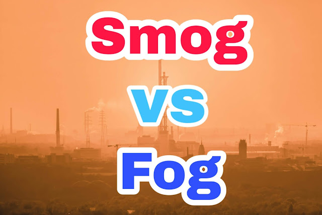 1. What is the difference between smog and fog? 2. It is said in Norway that the sun shines by midnight. Is this true? 3. Why do not birds fall down while sleeping? 4. Why are spirits applied before injection or needle 5. The gas metal is made of which thread and why it shines.