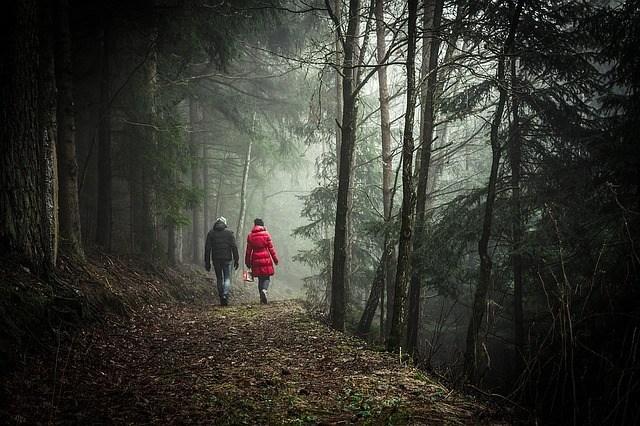 walking-1149747_640.jpg