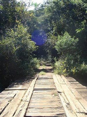 Ponte entre Acuruí e Rio Acima