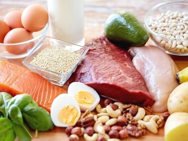 Makanan Alami Sumber Protein