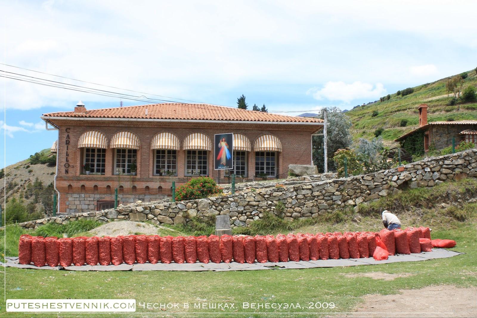 Мешки с чесноком в Венесуэле