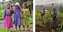 Bill' Excellent Adventures Rwanda