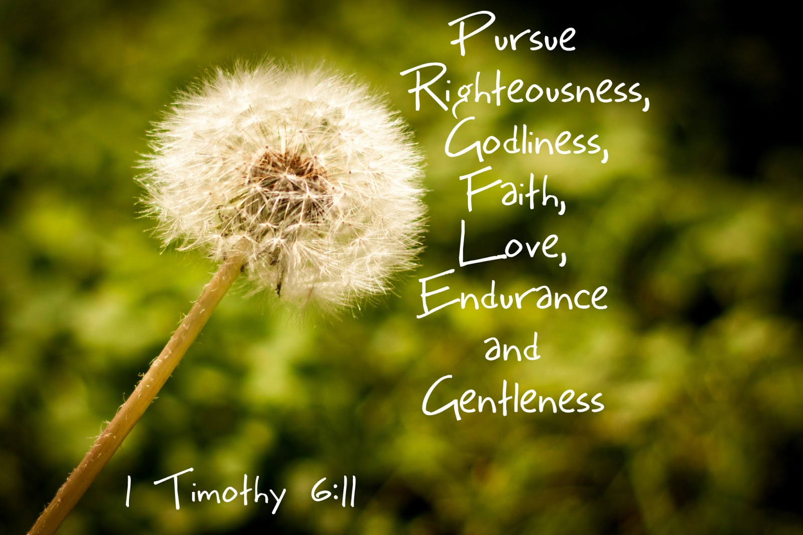 Gentleness Quotes Bible Quotes For March...