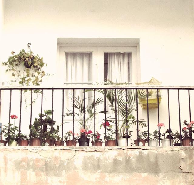 � Casas que decoran �