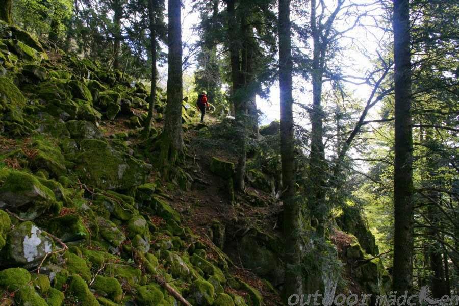 Wandern um den Hohneck Vogesen
