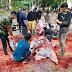 Hadi Tjahjanto dan Pejabat Tinggi di Mabes TNI Sumbang 30 Ekor Hewan Kurban Idul Adha