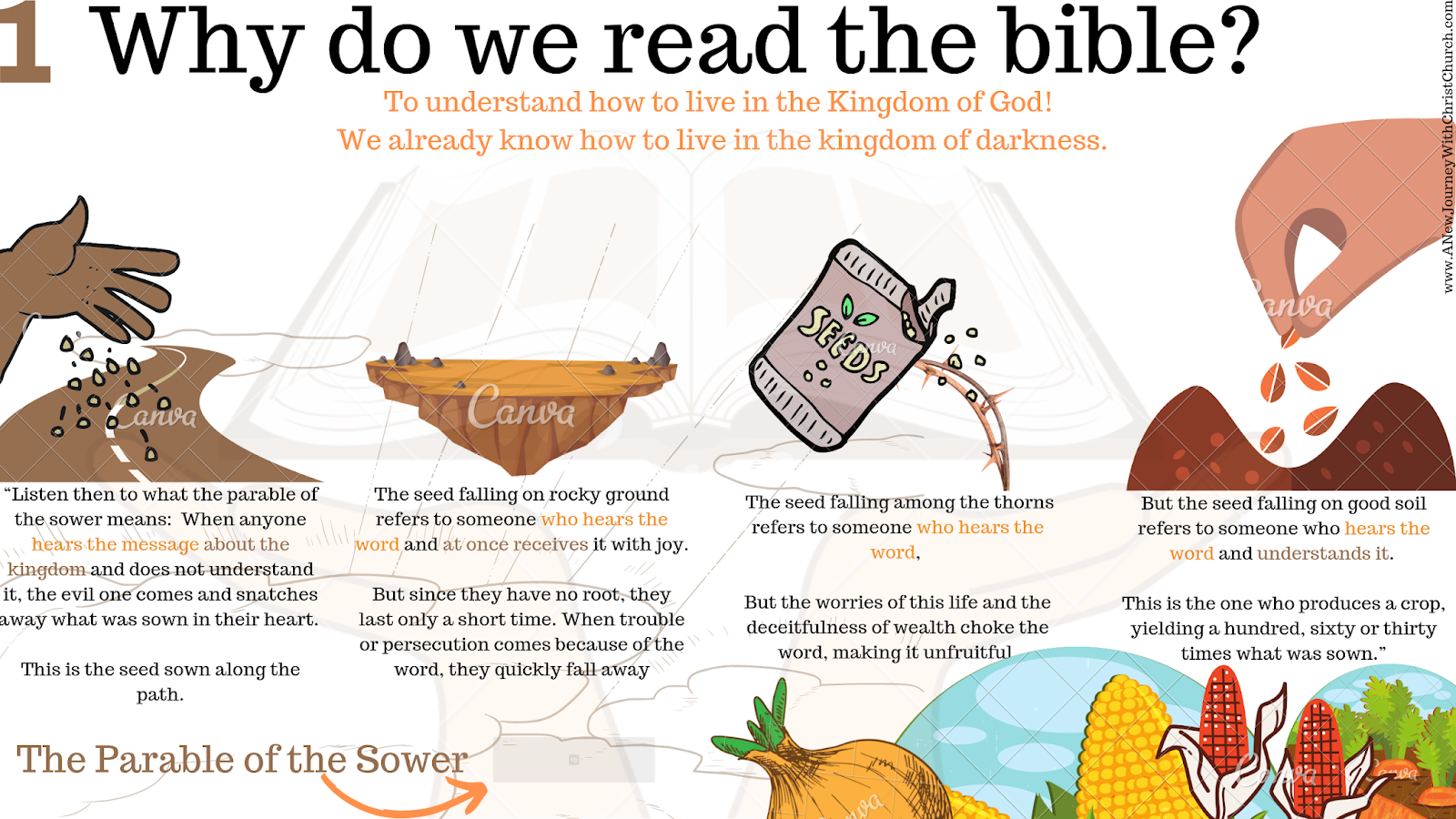 Why do we read the bible?