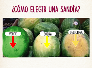 Trucos para elegir alimentos SANDIA