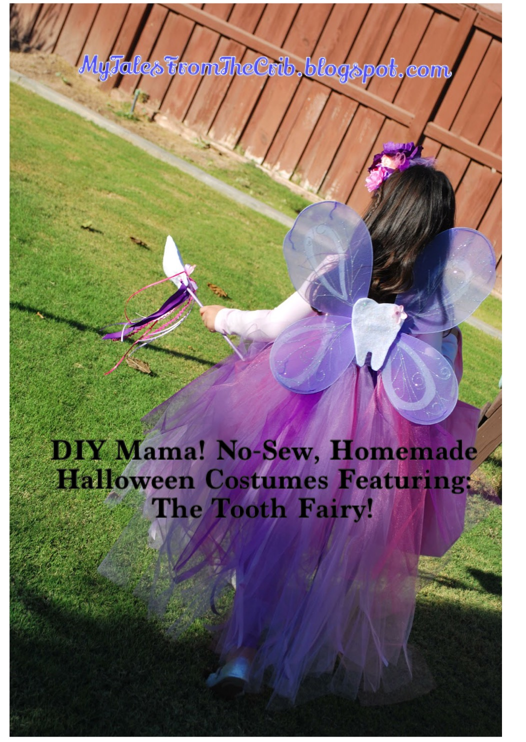 Looking For The No-Sew DIY Tooth Fairy Costume From Pinterest?