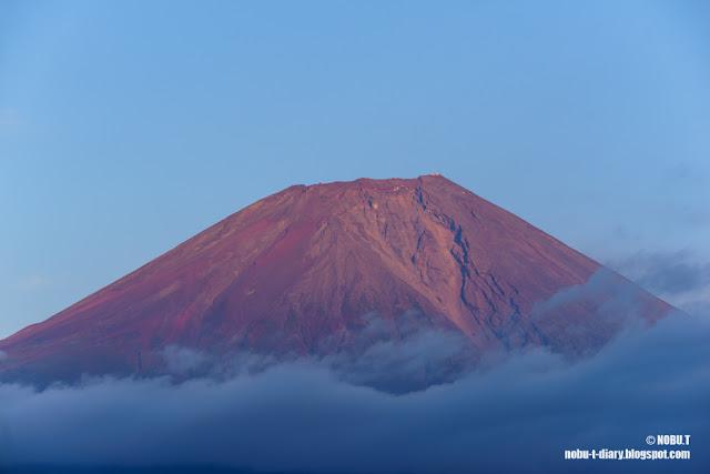 夕日の赤富士~朝霧高原