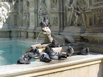 🚘Fontane rinascimentali della Toscana