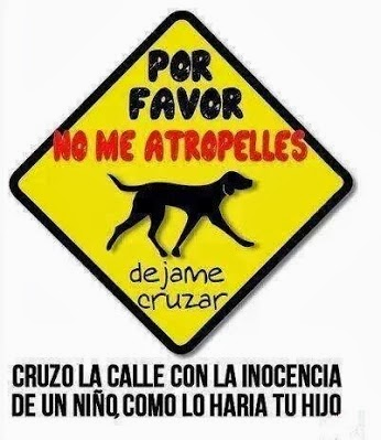 NO ME ATROPELLES .....