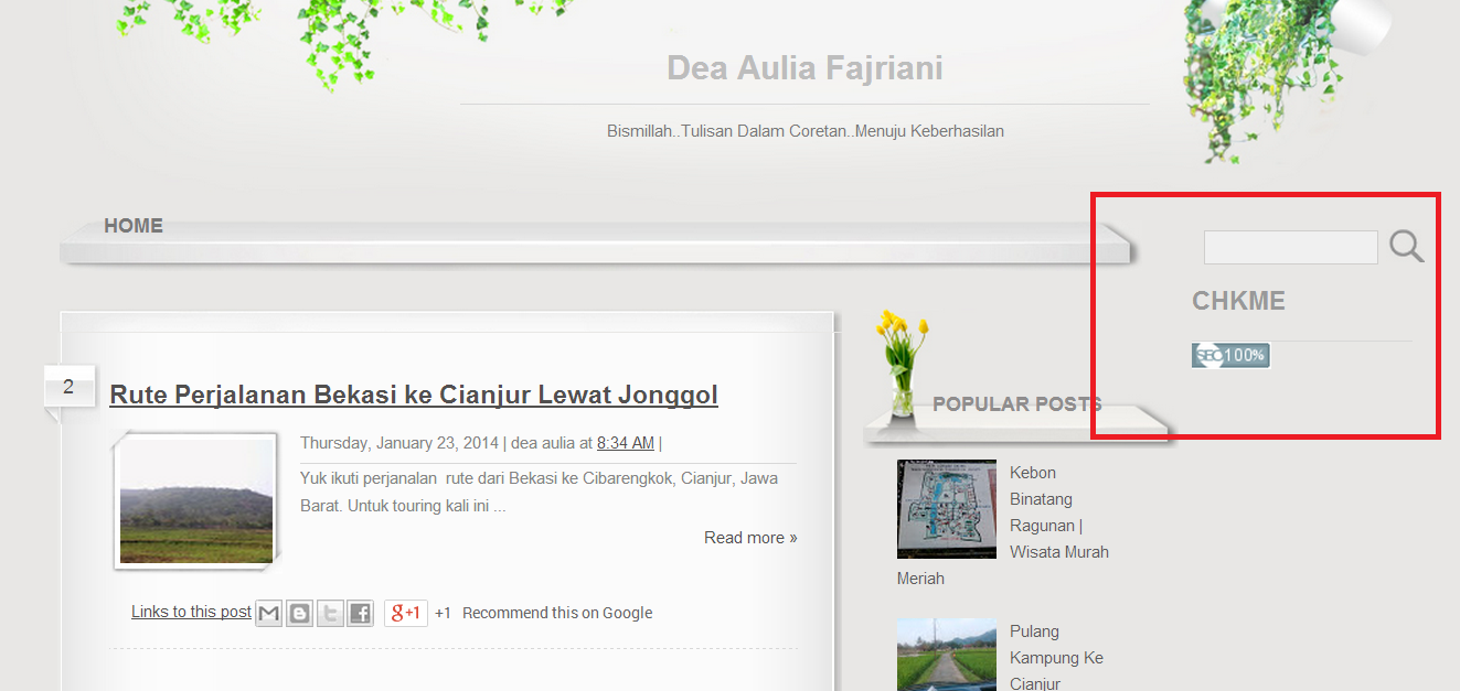 Tambah Widget di Blog | SEO Menjadi 100 % di CHKME.COM