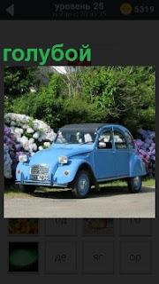 """На асфальте рядом с клумбой припаркован голубой автомобиль под названием """"жук"""""""