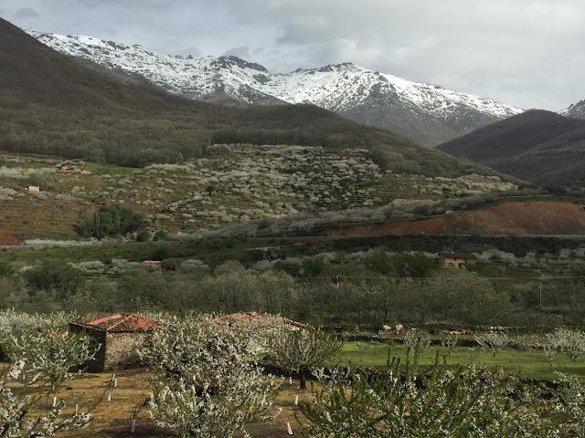 AlfonsoyAmigos - Valle del Jerte - Rutas MTB