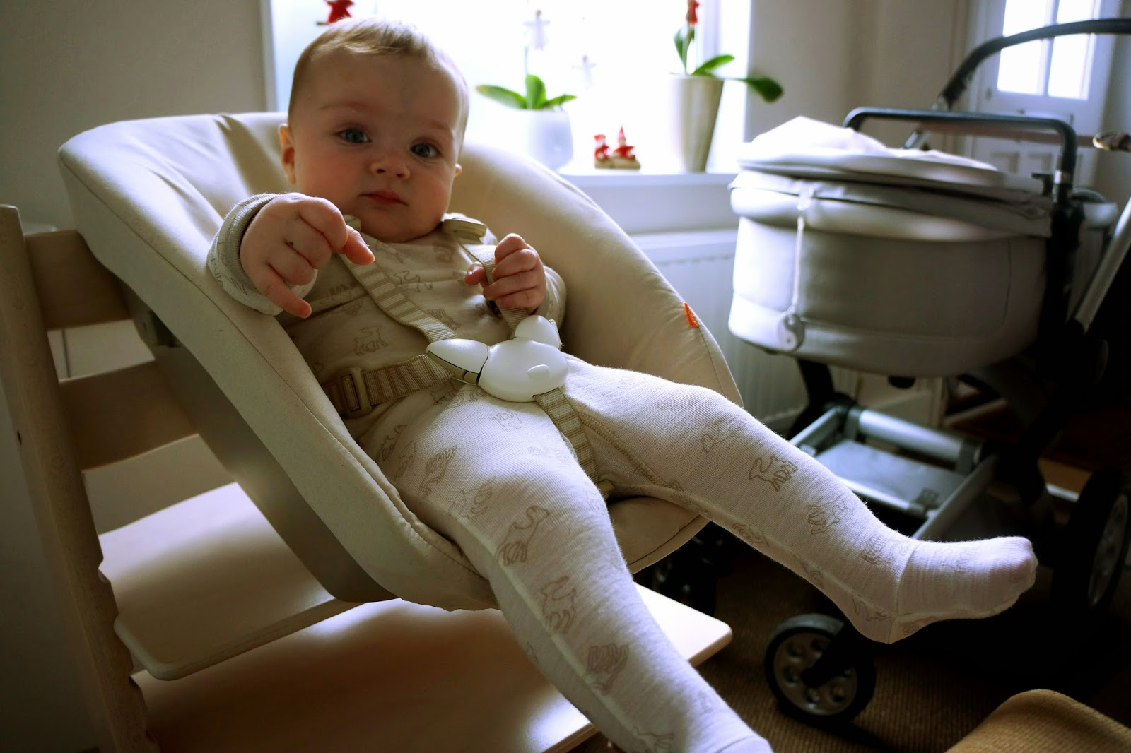 Stokke Chair Harness Recliner Stand Up Tripp Trapp Xplory Elsavadorla