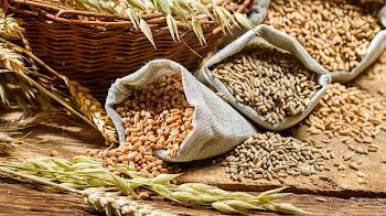 Beneficios de los cítricos y los cereales