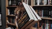 Mistborn: Nascidos da bruma, do Brandon Sanderson