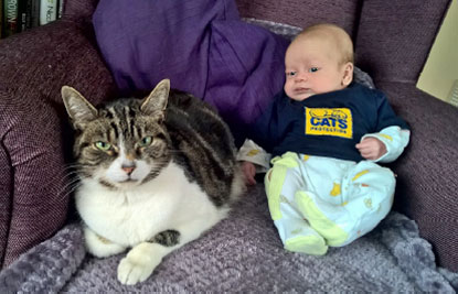 CP cat with a newborn baby