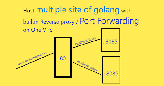 Host Multiple Web Sites of Go Using Reverse Proxy Example
