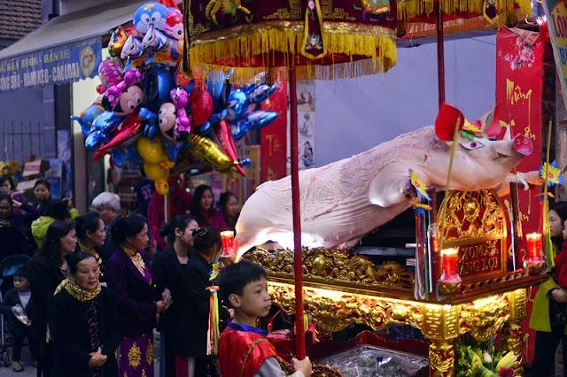 Pig procession festival in La Phu 1