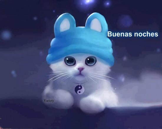 gatito Buenas noches