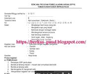 RPPH SEMESTER 1 PAUD TK B USIA 5-6 TAHUN LENGKAP SEMUA TEMA