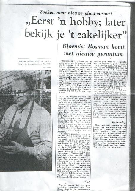 Henk Bosman