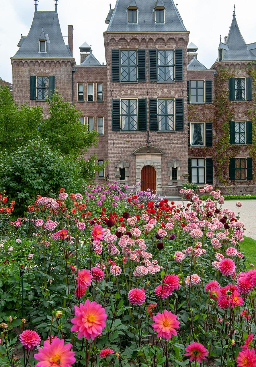 jardín con flores de dalias en tonos rosas