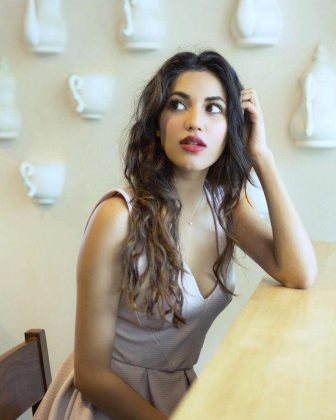 Shivani Singh Stunning Hot Photoshoot