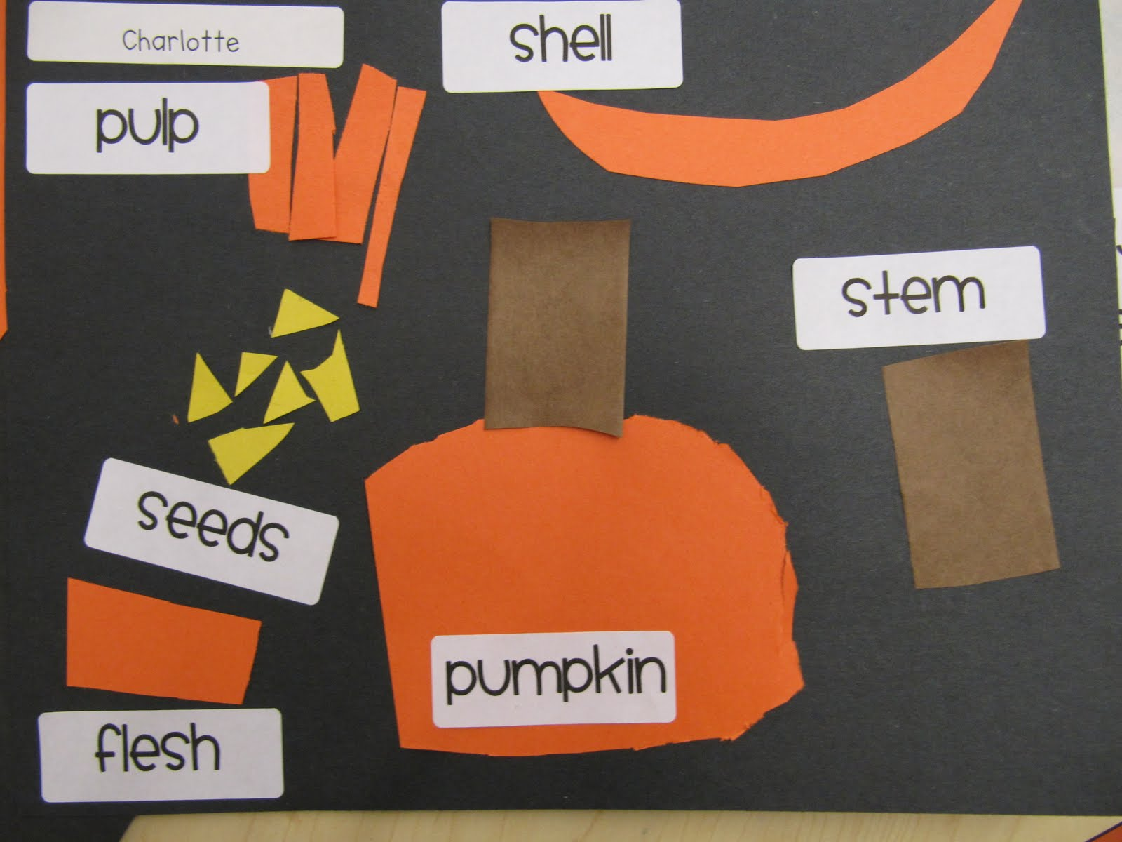 Kc Kindergarten Times Parts To A Pumpkin