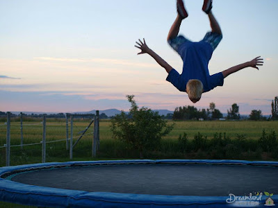 Why Is It Necessary to Insure a Trampoline?