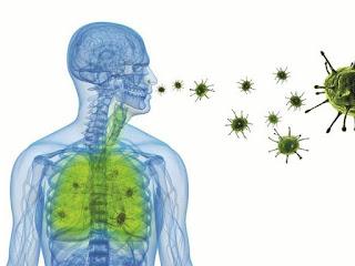 penyebab-penyakit-bronkitis