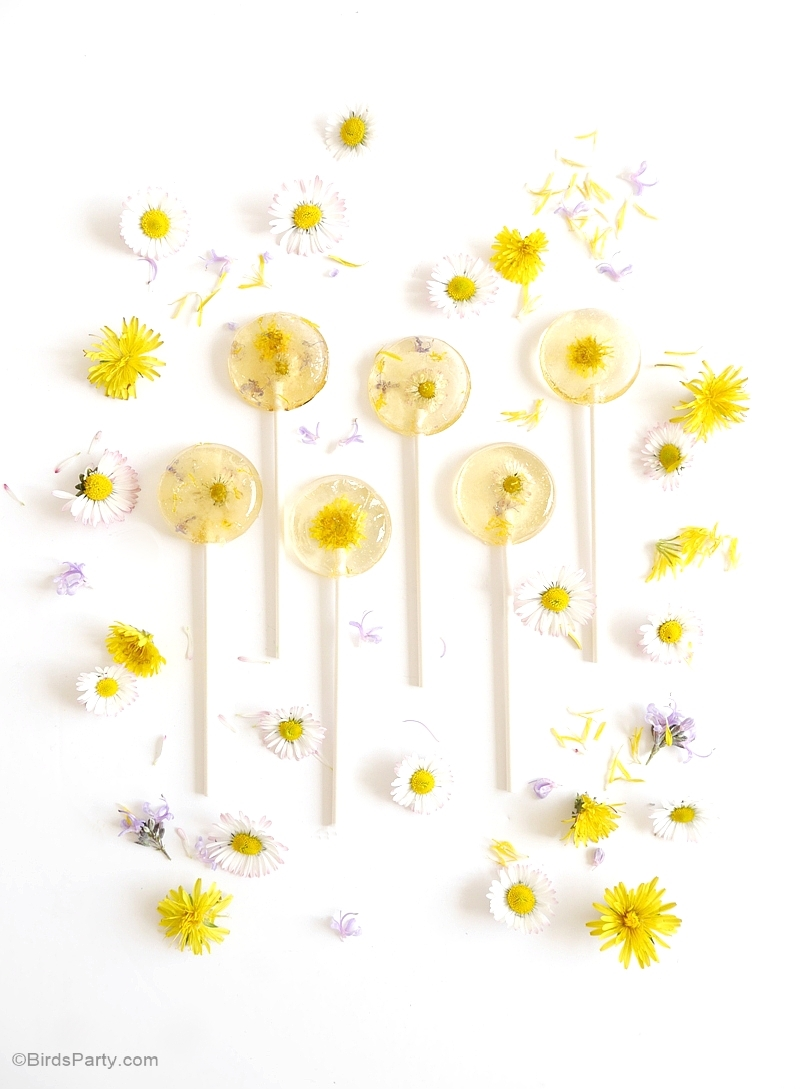 Honey & Lemon Floral Lollipops Recipe - BirdsParty.com