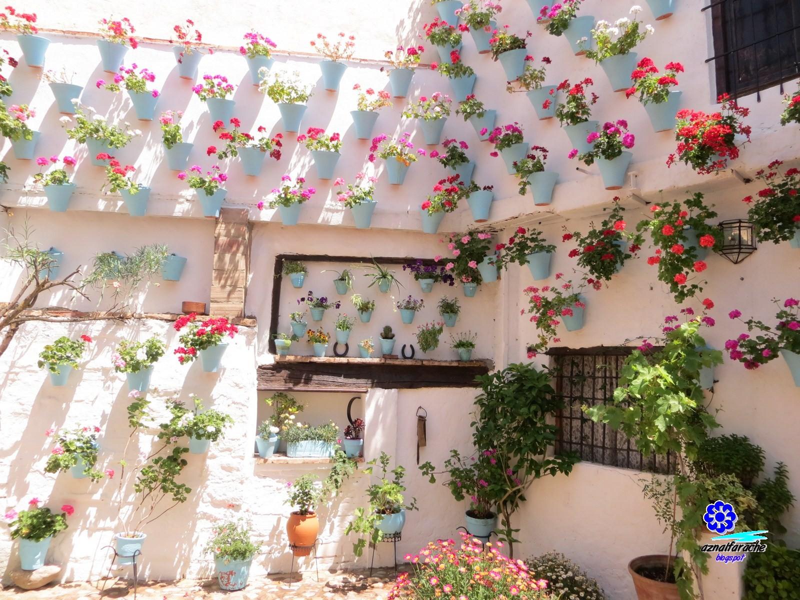 Los patios de c rdoba un tesoro de la sabidur a popular for Azulejeria antigua cordoba