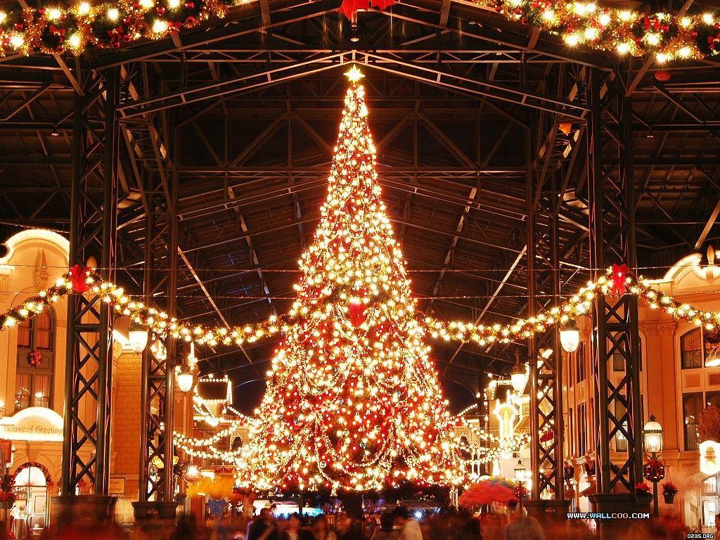 Christmas Day Celebration.Word Shopping Christmas Day Gefuhlt Ihre Feierlaune