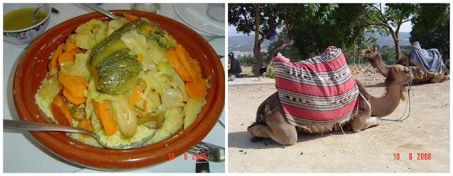 cuscus marroquino e camelo/dromedário