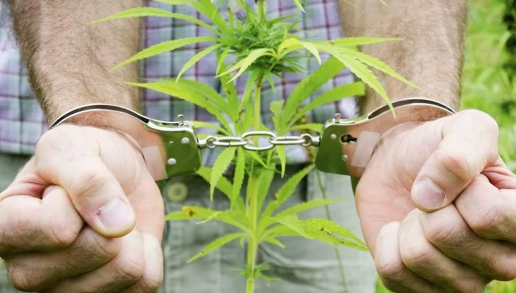 Συνελήφθη 20χρονος με κάνναβη στη Λάρισα