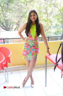Telugu Actress Prasanna Stills in Short Dress at Inkenti Nuvve Cheppu Press Meet Stills  0182.JPG