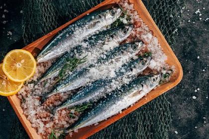 Rajin Makan Ikan Laut Berpotensi Panjang Umur!