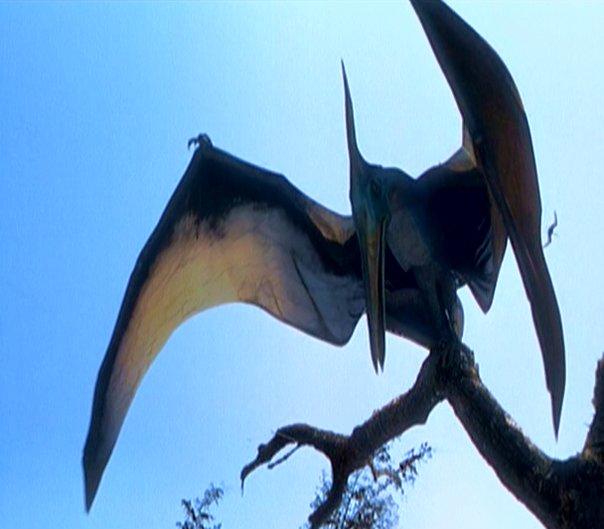 DINOSAUR: The Pterodac...