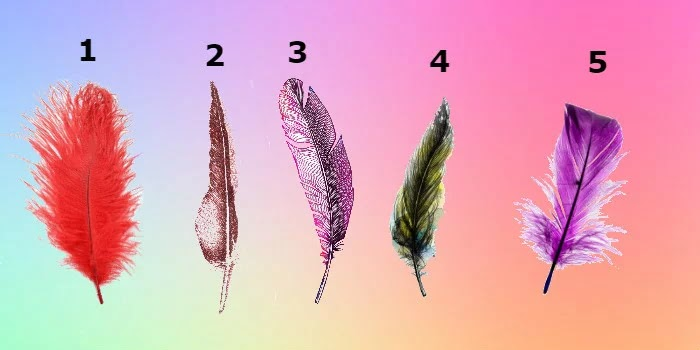 The Feather You Will Choose Will Determine Your Most Important Personality Traits