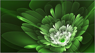 صور خلفيات زهور خضراء HD