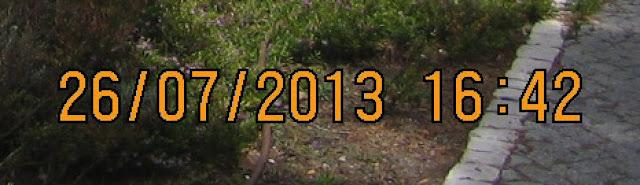 Zona ampliada de una imagen para eliminar texto en Photoshop