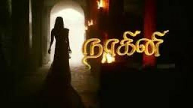 Nagini suntv hd live Archives -