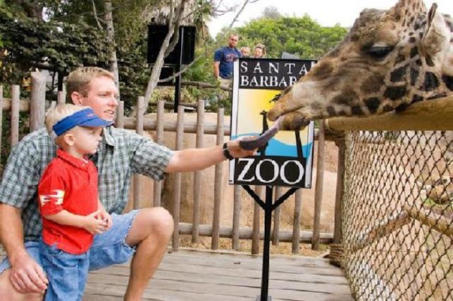 Santa Bárbara Zoo em Santa Bárbara