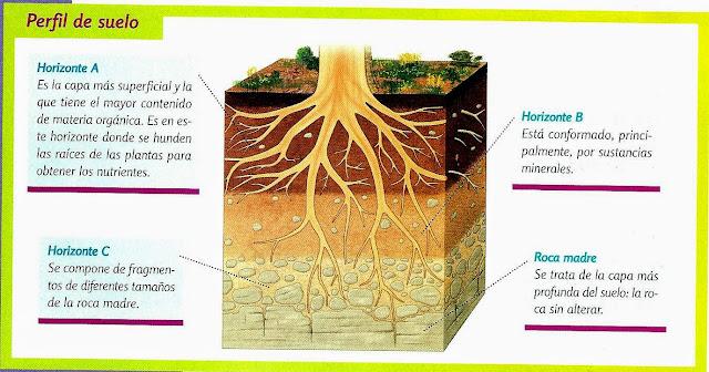 5to b lic jessica mendoza horario de cuarto b matutina for El suelo y sus capas