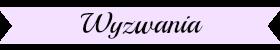 http://gabrysiekrecenzuje.blogspot.com/p/wyzwania.html