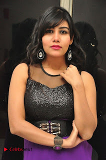 Telugu Actress Rachana Smith Stills at Money is Honey Audio Release  0006.jpg