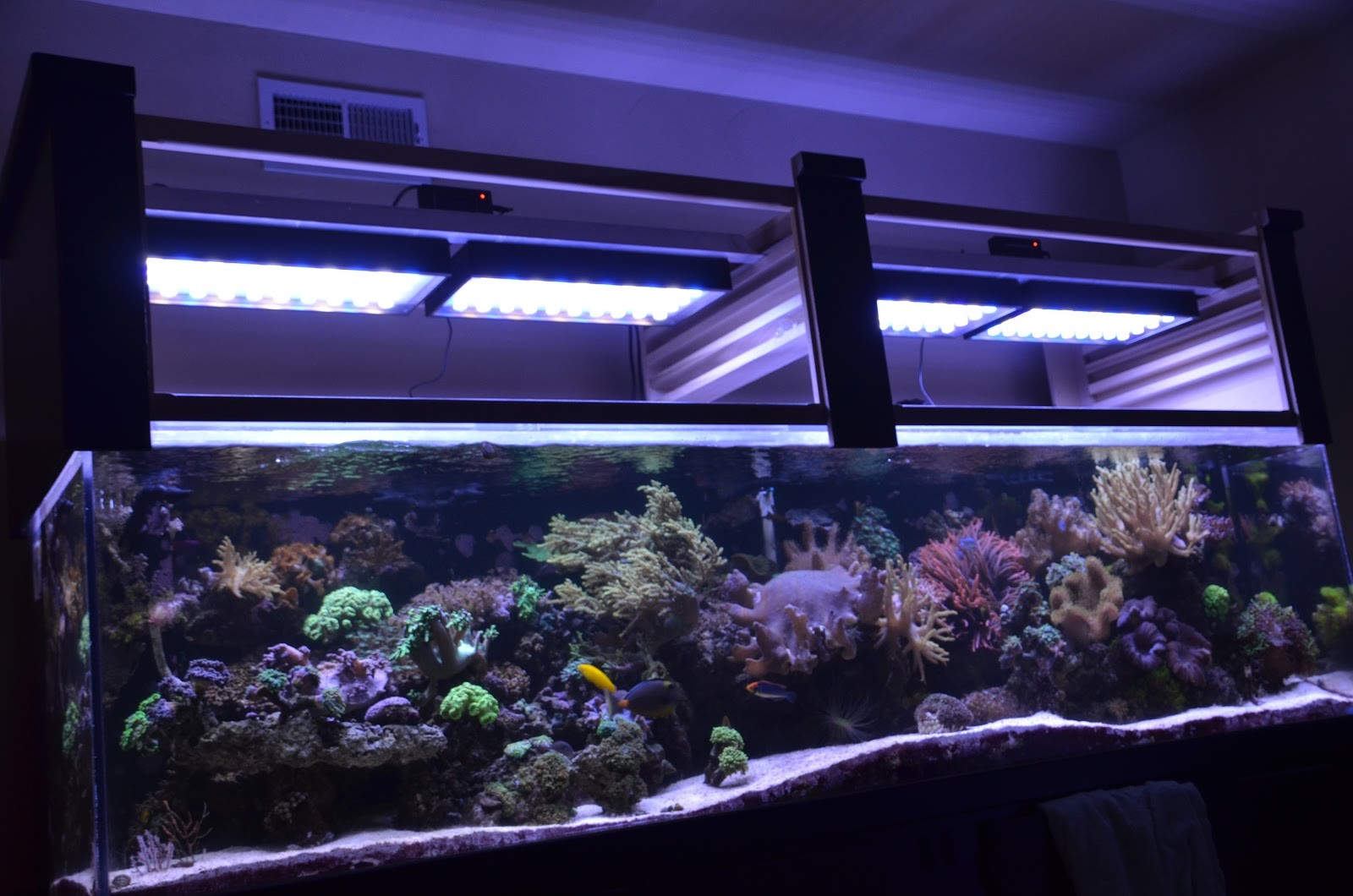 OCReef X Series LED Fish Tank Lights